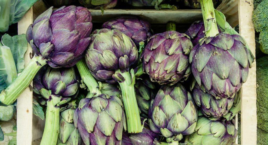 Feeding MaxWell – Mediterranean Diet